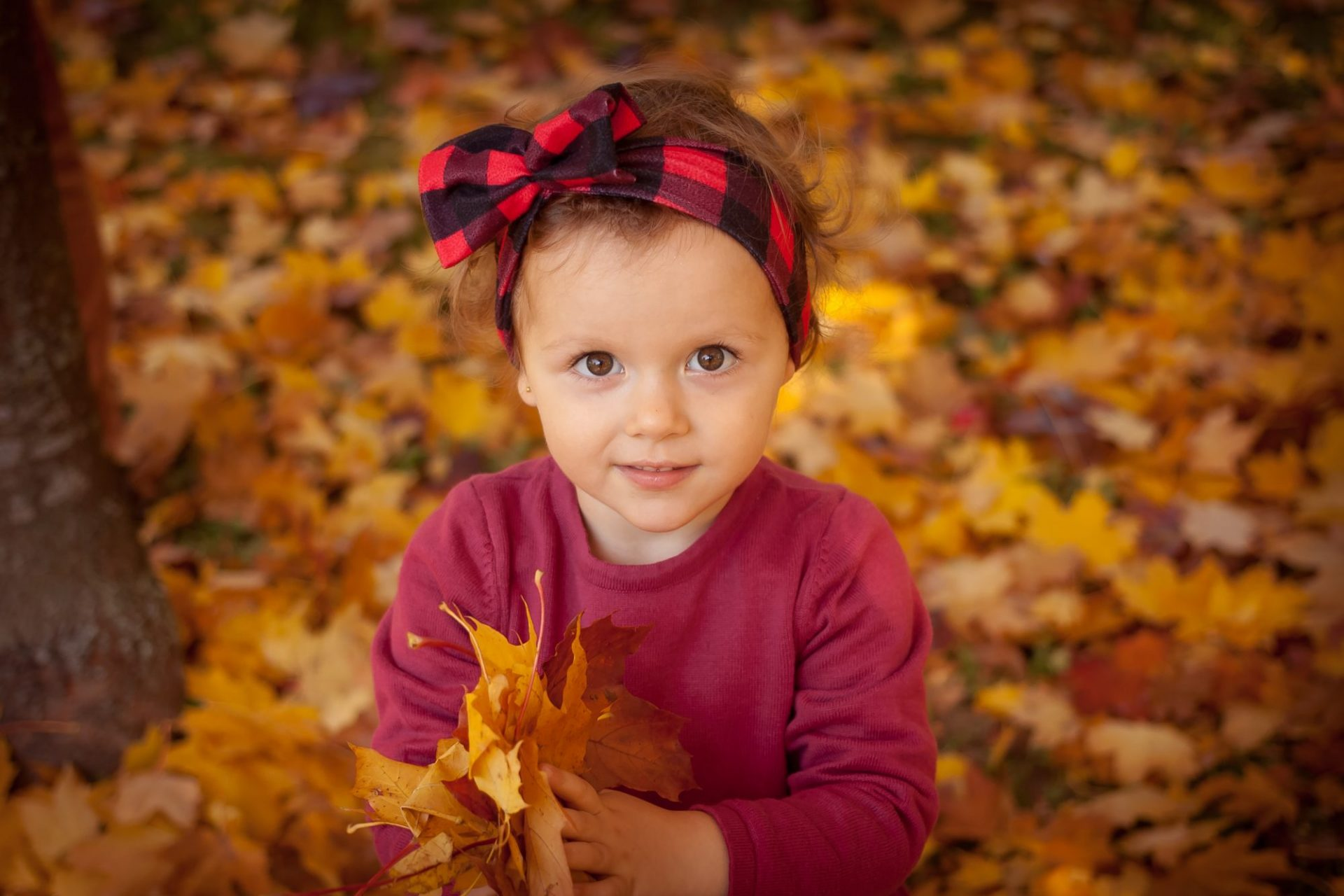 Poem – My Lost Love (daughter?) #parentalalienation